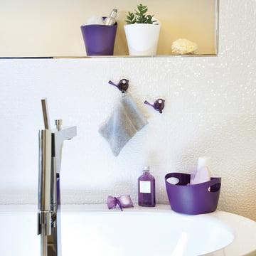 Koziol Bottichelli bath holders
