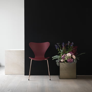 Series 7 Chair - Special Edition 2017 from Fritz Hansen