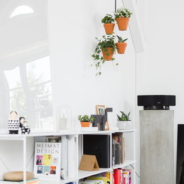 White Walls + Ambience and Plants = Feel Good Atmosphere