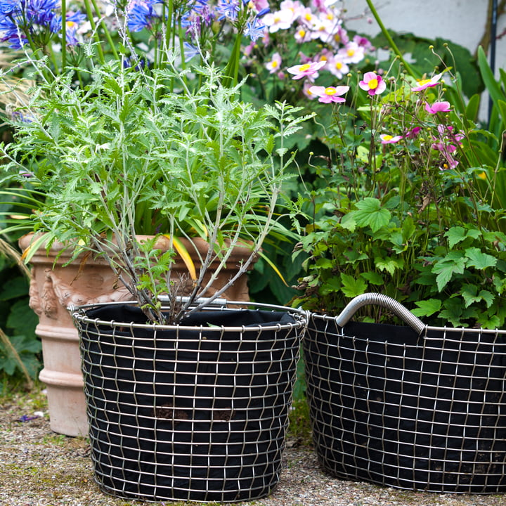 Bucket & Bin Wire Basket by Korbo Made of Stainless Steel